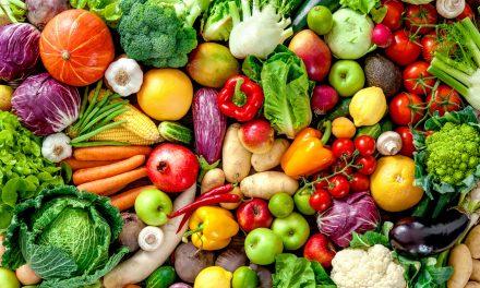 A zöldség-gyümölcs feldolgozóipar vagyoni, jövedelmi és pénzügyi helyzetének elemzése