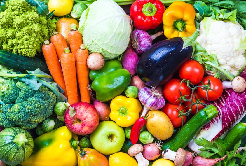 FruitVeB Bulletin – Bevezetés (1. rész)