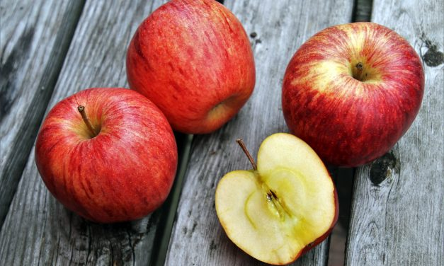 Az étkezési almatermesztés gazdaságossága (1. rész)
