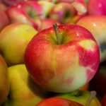 Az étkezési almatermesztés gazdaságossága (2. rész)